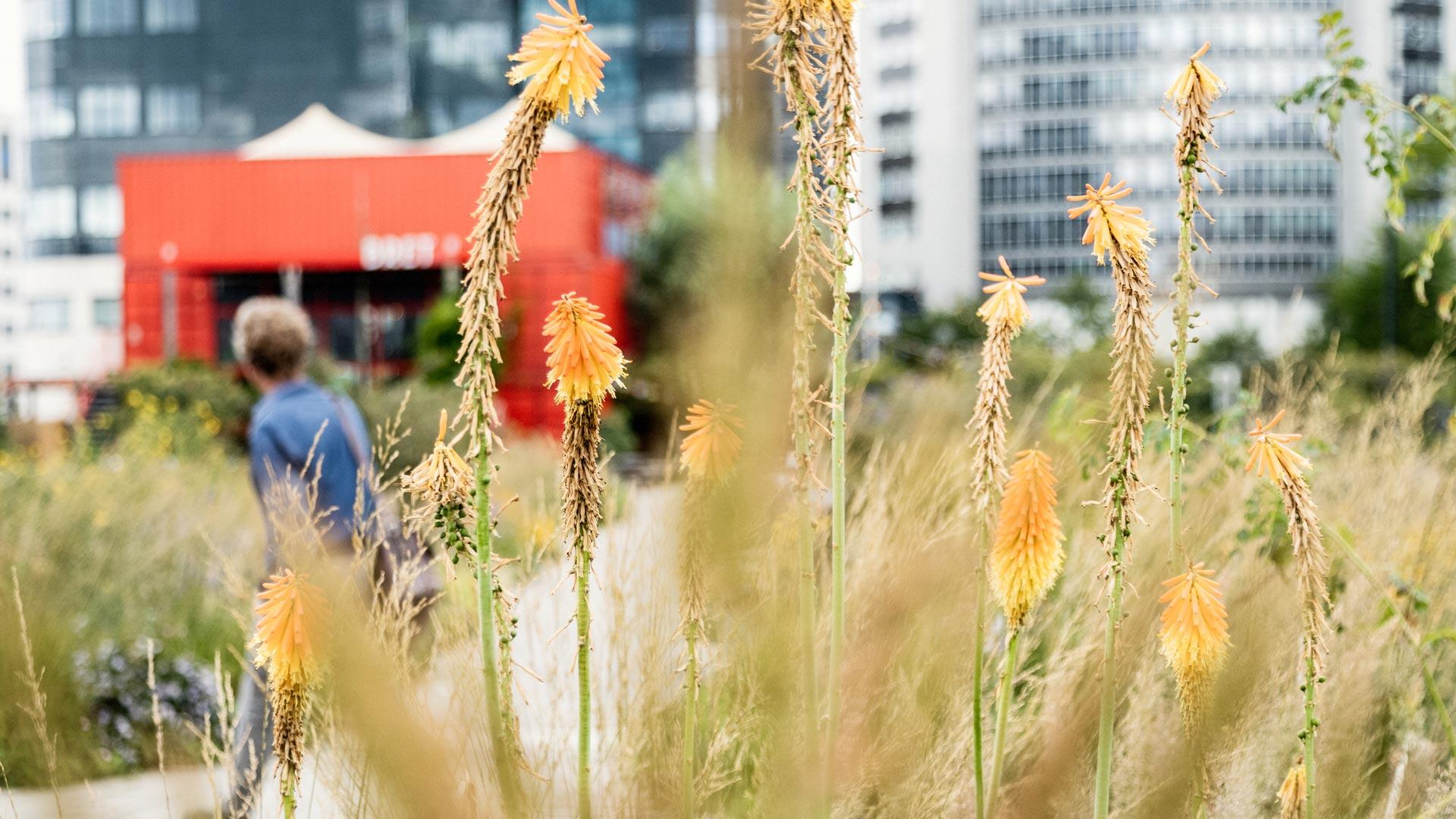 UPtown Sloterdijk - Foto - yoreM - werk